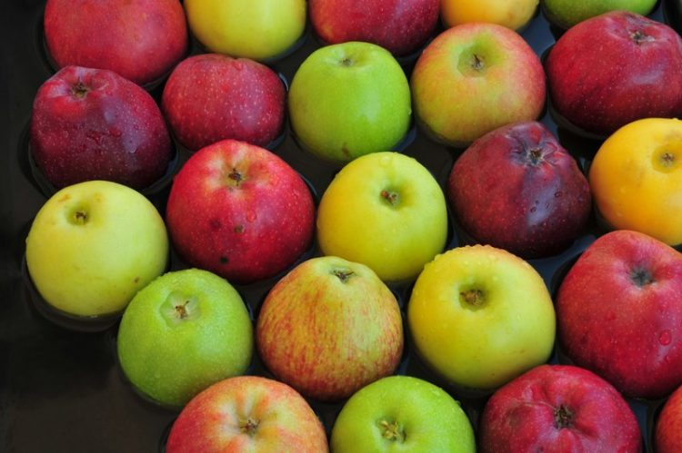 hydrating foods apples