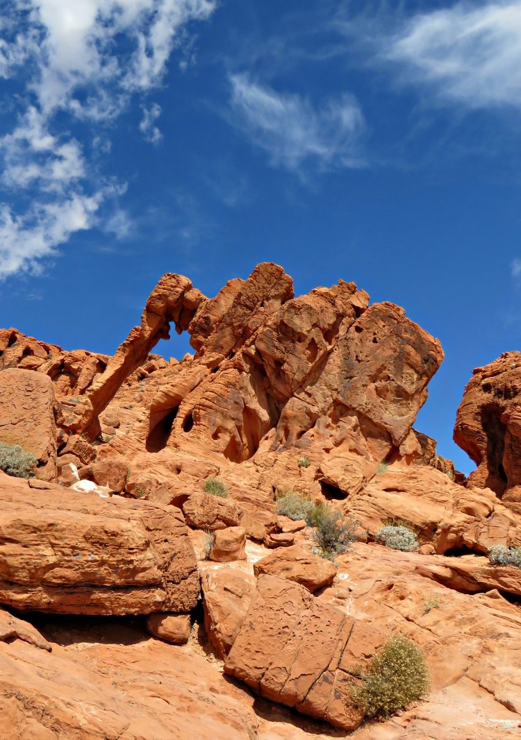 Elephant Rock at Valley of Fire