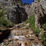 Little Falls at Mount Charleston
