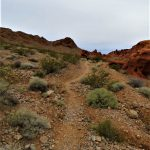 Prospect Trail at the Valley of Fire