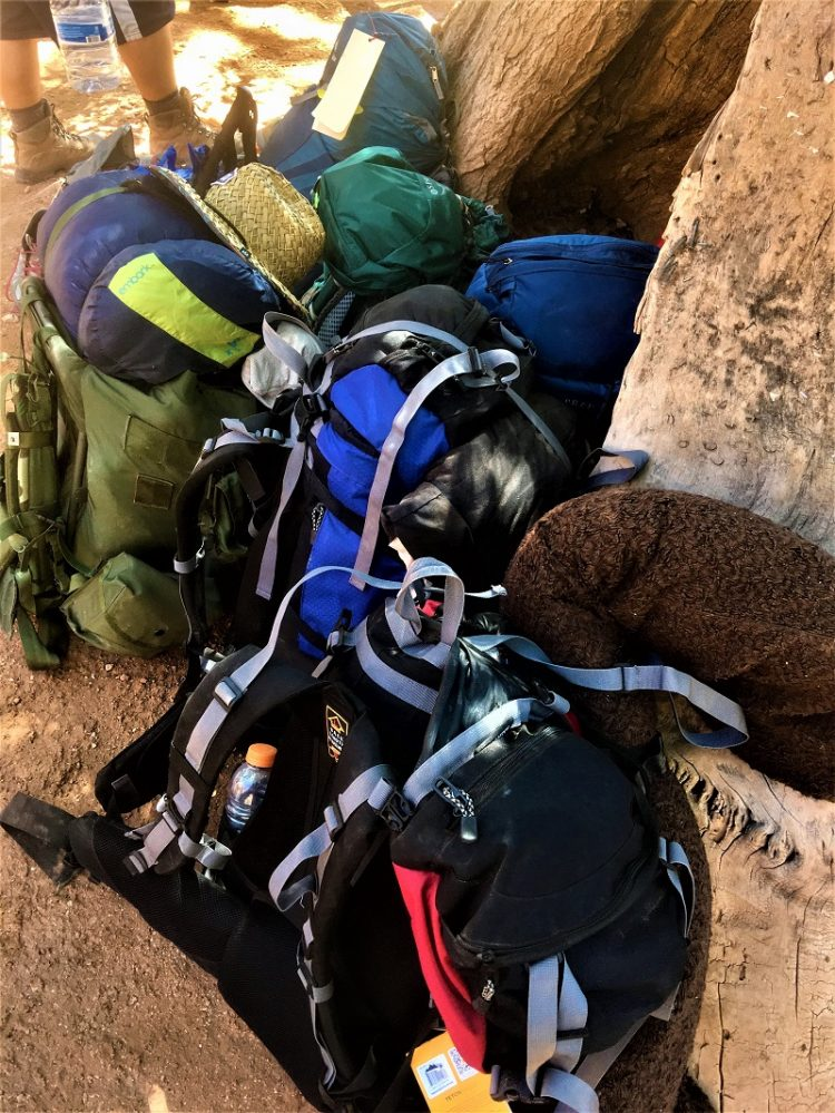 Backpacks for Havasupai
