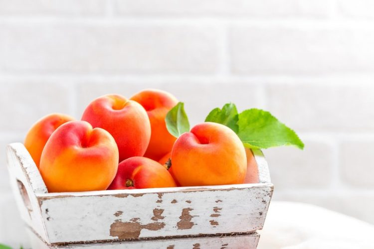 hydrating foods apricots