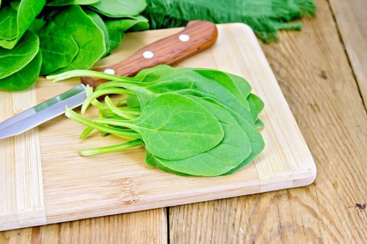 hydrating foods spinach